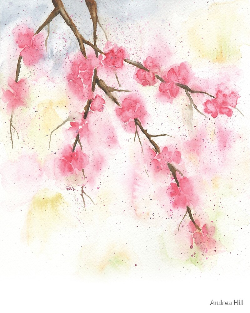 Watercolor Painting of Cherry Blossoms Spring  by Andrea Hill