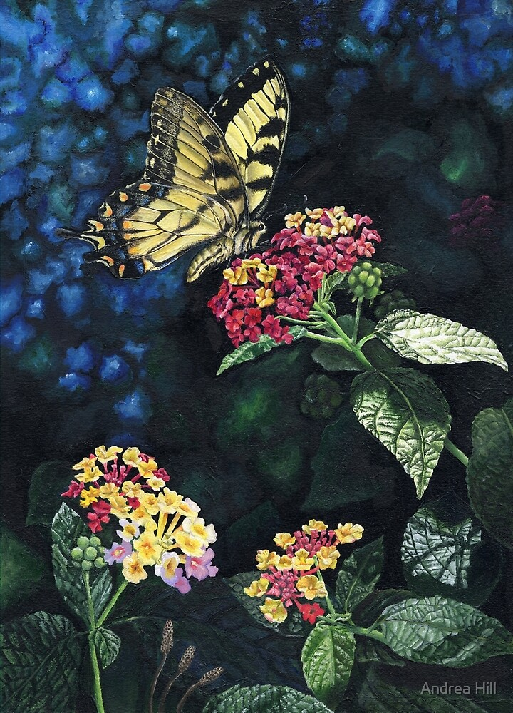 Summer Swallowtail  by Andrea Hill