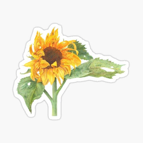 Sunflower March 2019 Sticker