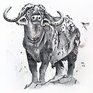 Buffalo by BruksSketches