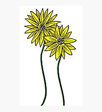Two Daisies Coloured Yellow with Transparent Background Photographic Print