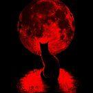 Staring at the Moon by Lou Patrick Mackay