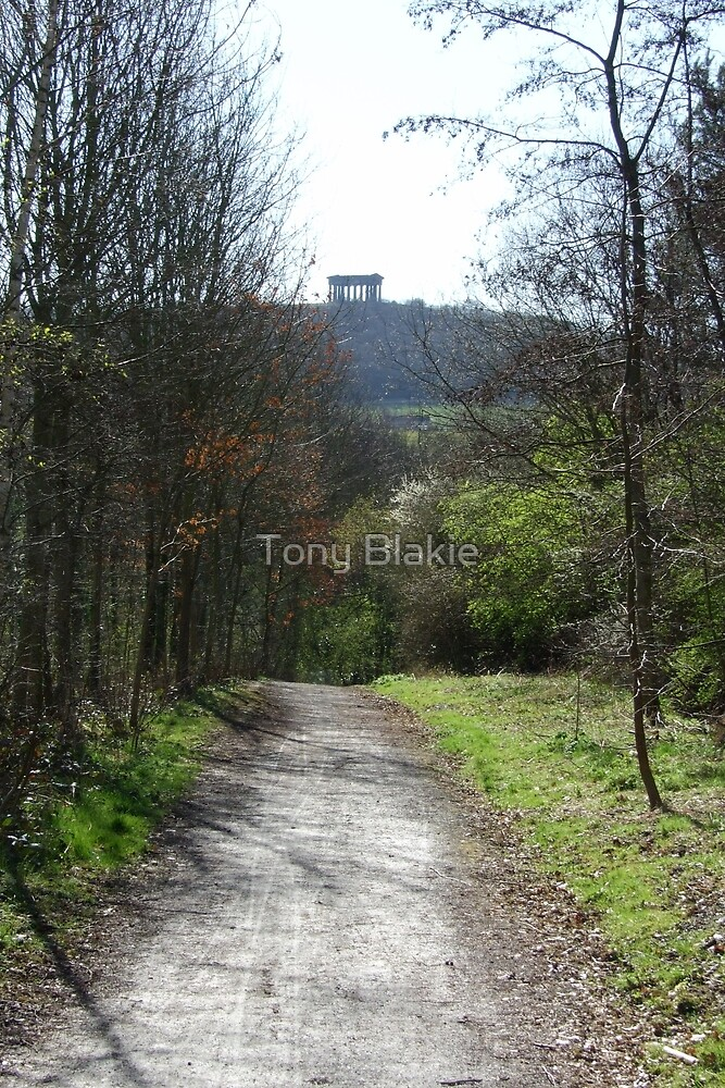 Country trail with monument in background by Tony Blakie
