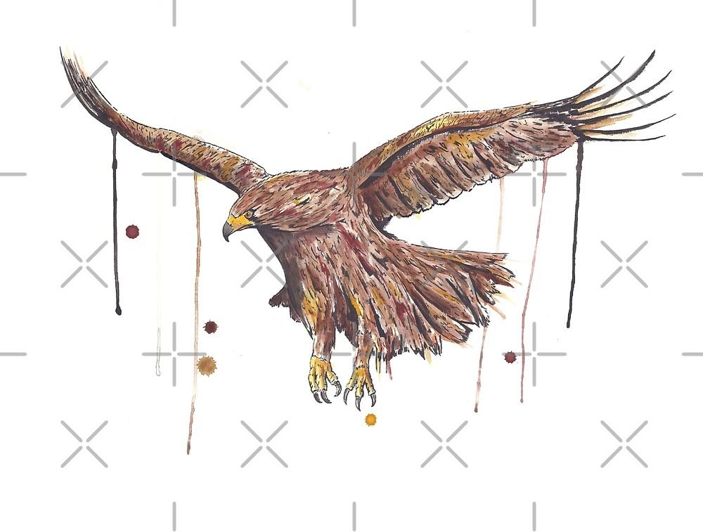 Golden Eagle by Calum Margetts Illustration