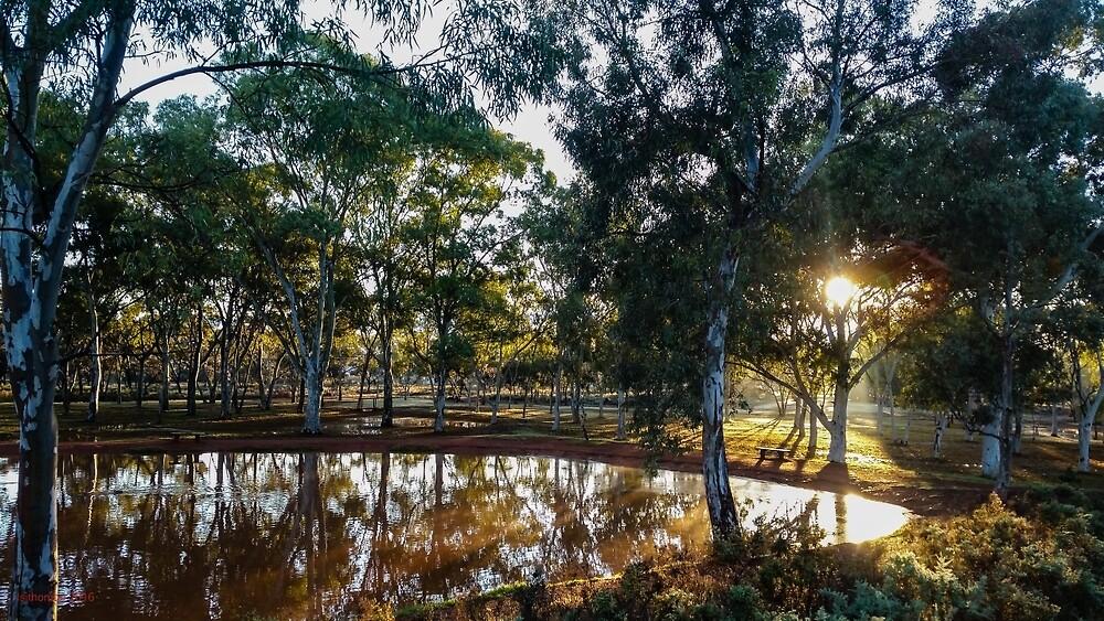 After The Rain, Kalgoorlie WA Australia by IsithombePhoto