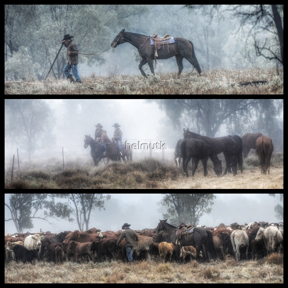 The Drover by helmutk