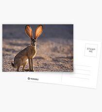 Lass die Sonne durchscheinen Postkarten