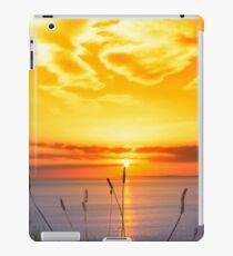 wild tall grass on the wild atlantic way orange sunset iPad Case/Skin
