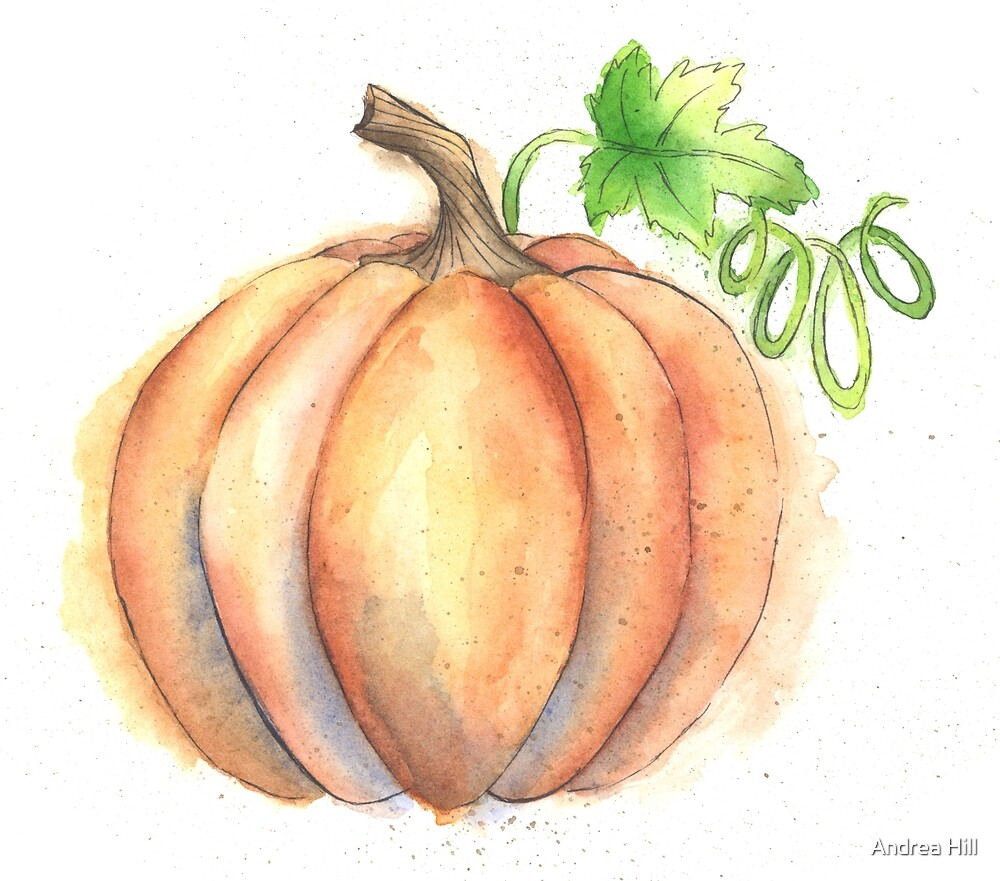 Watercolor Painting of a Pumpkin by Andrea Hill