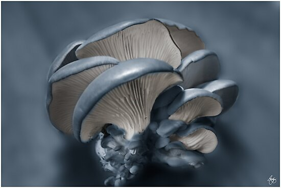 Shelf Fungus in Blue by Wayne King