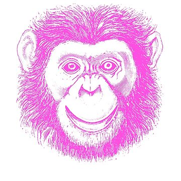 Chimpanzee Ape by Zehda