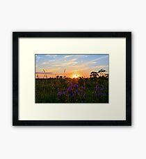 Summer Prairie Sunset Framed Print