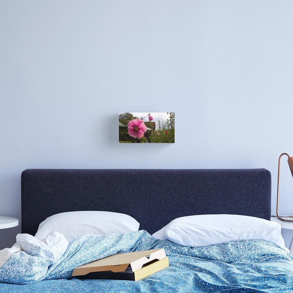 Pink flower power Canvas Print