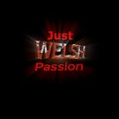 Wales Welsh Passion by sjbaldwin