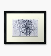 Winter in The Garden of Eden Framed Print