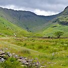 View towards Allen Crags by mikebov