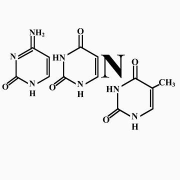 Cytosine.Uracil.Nitrogen.Thymine by Kilick