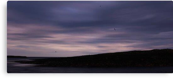 Farne Island Seascape by DianneKB
