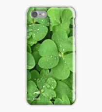 Wet Clover Blooming iPhone Case/Skin