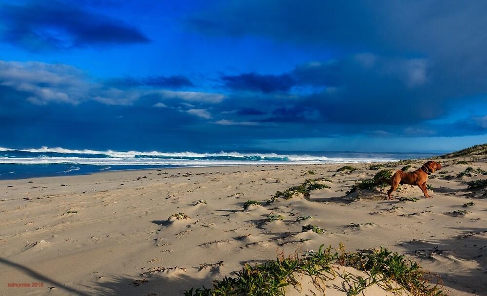 10 Mile Lagoon, Esperance WA Australia by IsithombePhoto