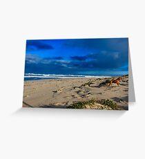 10 Mile Lagoon, Esperance WA Australia Greeting Card