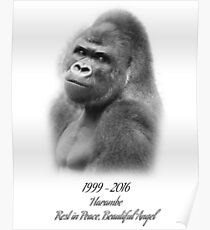 Rest in Peace, Harambe Poster