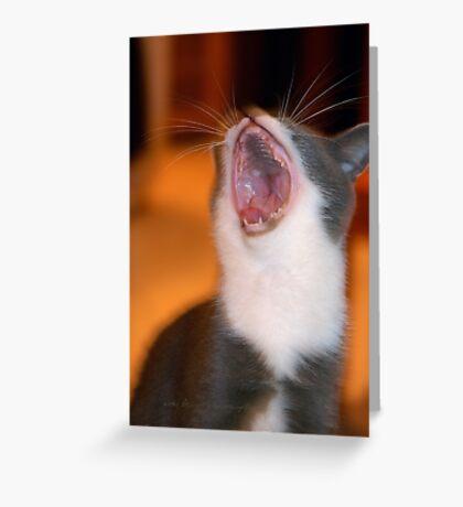 Ha Ha Ha Ho Ho Ho © Vicki Ferrari Greeting Card