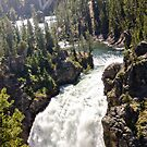 Yellowstone State Park  by beckam81