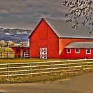 Red Barn by beckam81