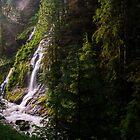 Boulder River Falls - Boulder River Wilderness, Washington by Jason Heritage