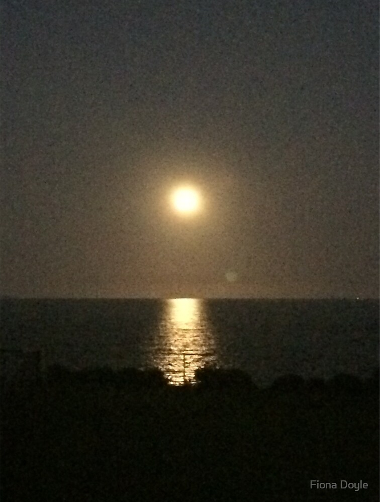 Moon over the bay by Fiona Doyle