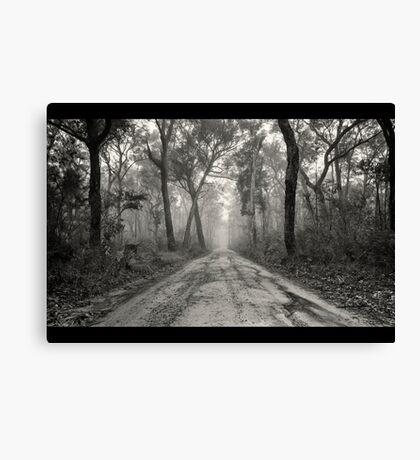 ~ a foggy beginning ~ Canvas Print