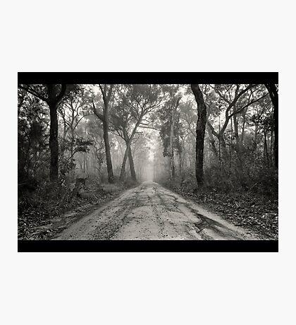 ~ a foggy beginning ~ Photographic Print