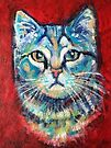 Blue kitten on red by Karin Zeller