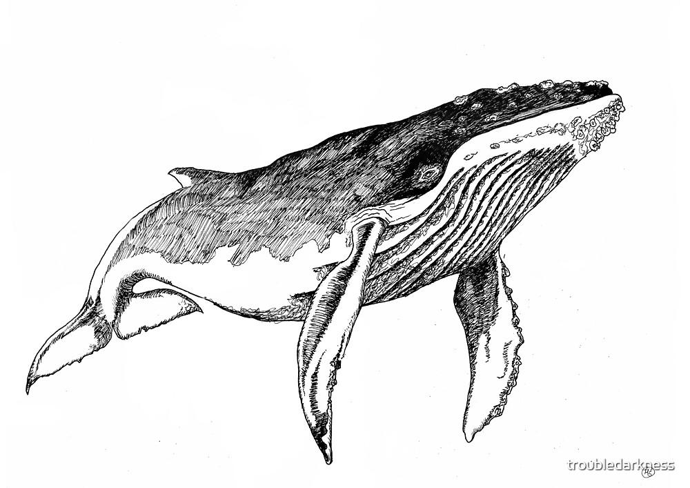 Whale  by troubledarkness