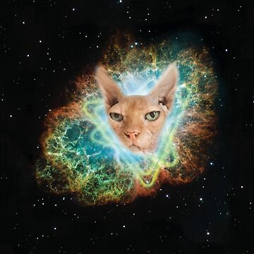 Space Sphynx Overlord, Cats in Space by Nadinosaur8
