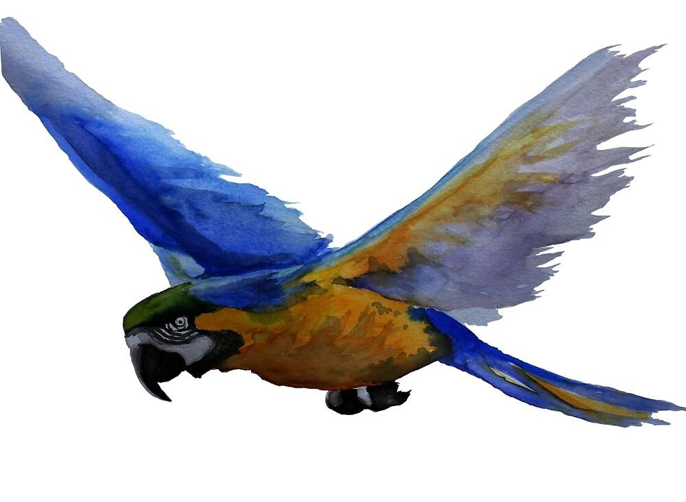 Parrot In Flight by Allen Donnelly