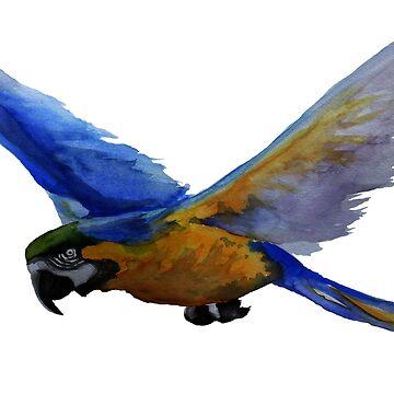 Parrot In Flight by BigAlien