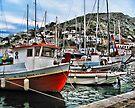 Colorful Fishing Boats - Island of Aegina,  Greece by T.J. Martin