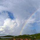 The Rainbow by crimsontideguy