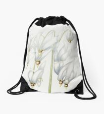 Shooting Star Drawstring Bag