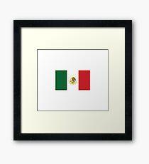 Mexican Flag Framed Print