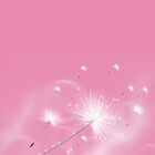 Make a Wish! by saleire