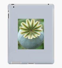 Pretty plant flower pattern iPad Case/Skin