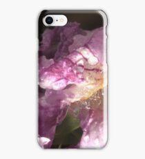 Desert Willow iPhone Case/Skin