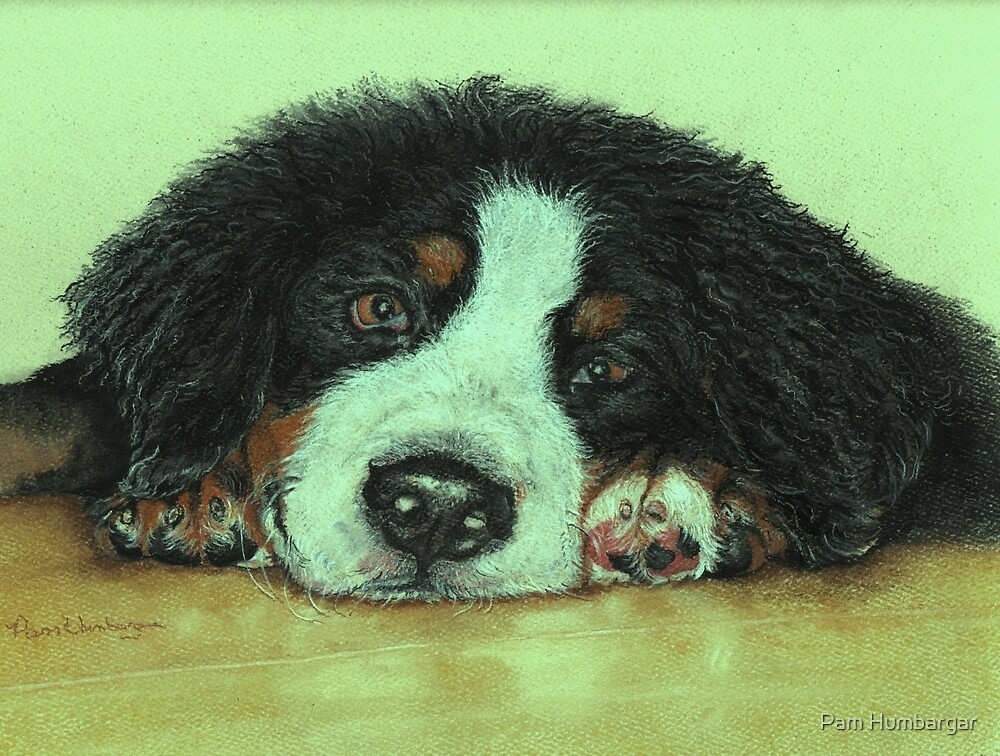 Big Puppy Paws by Pam Humbargar