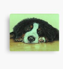 Big Puppy Paws Canvas Print