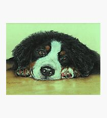 Big Puppy Paws Photographic Print