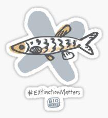 BioBlitz Fish Sticker