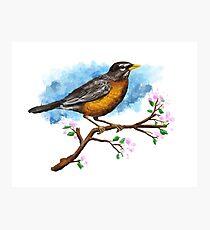 Bird Painting illustration Photographic Print